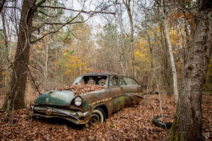 Autumn Blues by FabulaPhoto