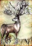 Spirit of an Immortal Nature
