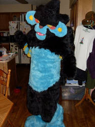 Luxray Used...Fruity Prance?