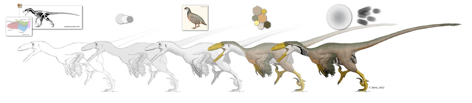 Deinonychus WIP by DELIRIO88