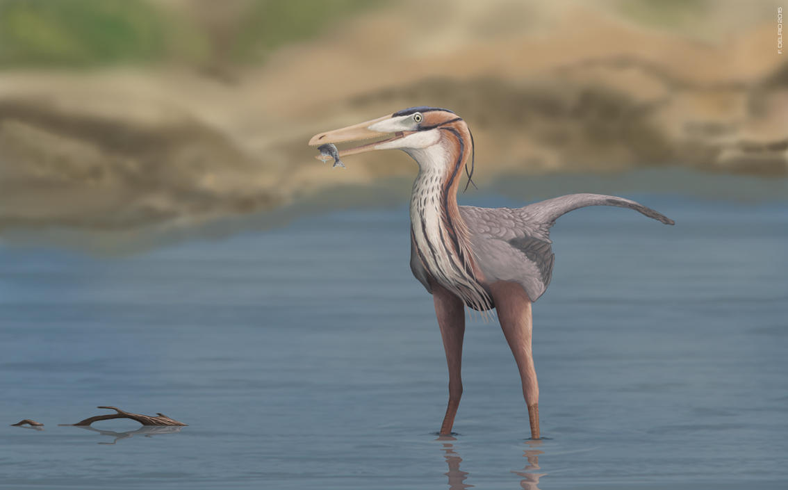 Buitreraptor fishing by DELIRIO88