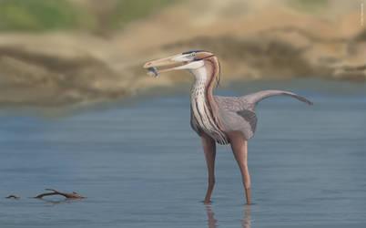 Buitreraptor fishing
