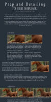 Prep and Detailing Equine Tutorial by mockingale