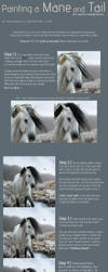 Mane and Tail Tutorial by mockingale