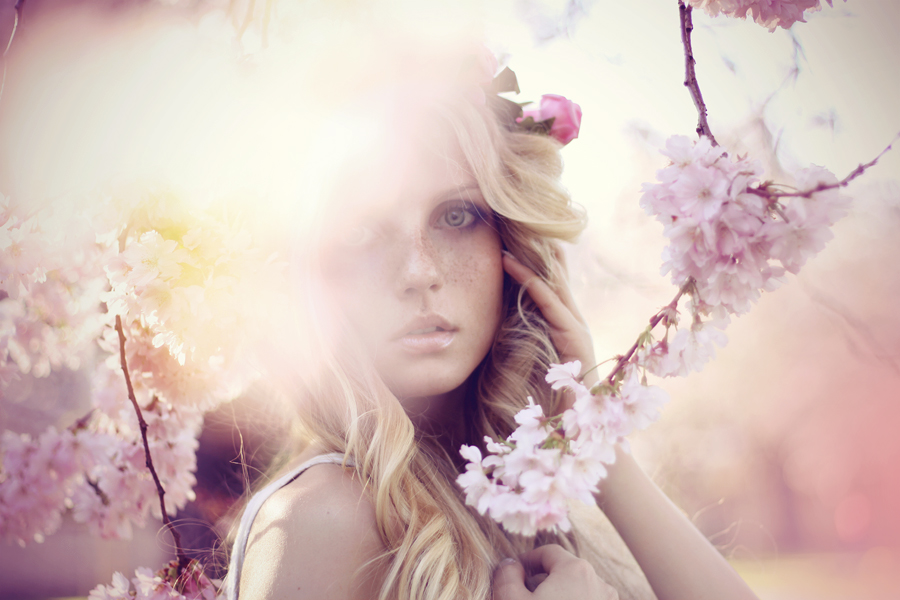 Sun of Summer by StefanieSauer