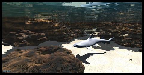 Shark reef by GabrielM1968