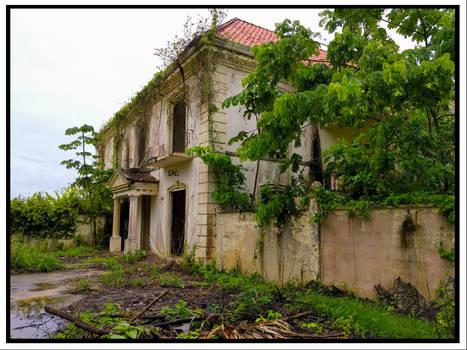 -Abandoned-