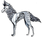 Wolf Guts