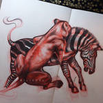 Sum Lion/Zebra Action