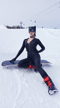 CatWoman DC Comics Batman Arkham Knight