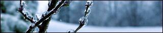 Frozen ruïns