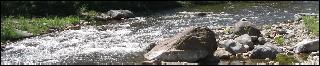 Untamed Rivers