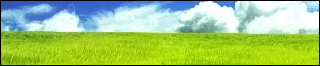 Peaceful Plains