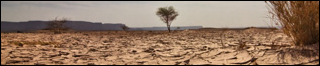 Sandtomb Desert