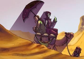 Through The Desert by TessCas