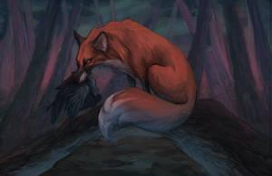 Fox by Catakumba