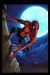 spiderdude night