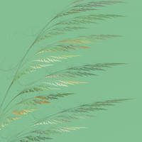 Wintered Wheat (detail) by Adrolyn