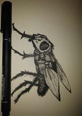 Fly by LuiHenri