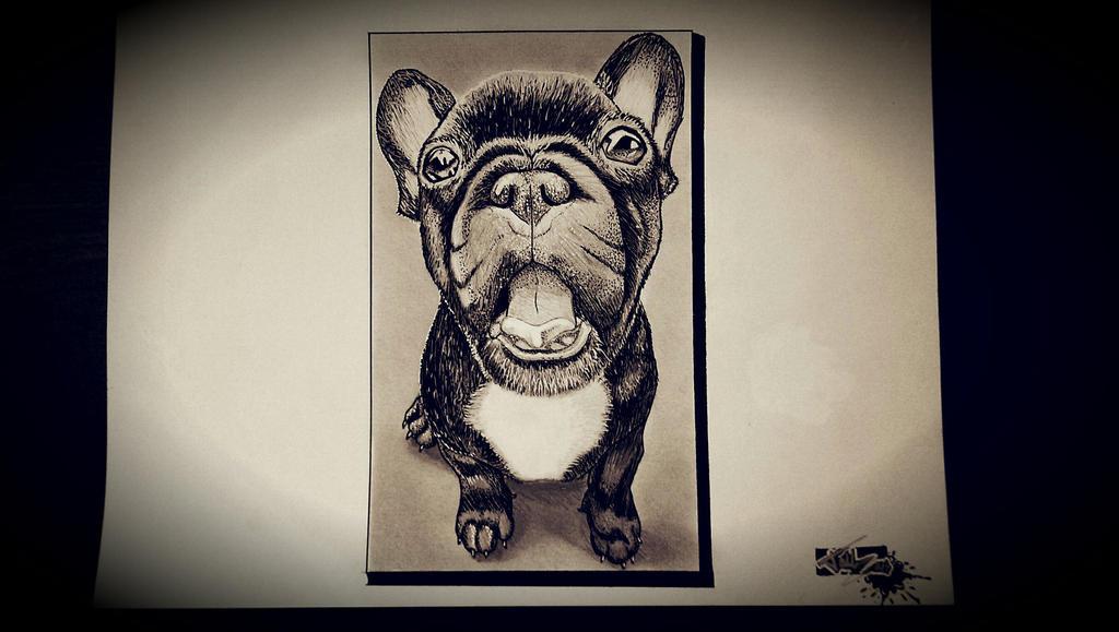 Petit Bulldog Francais by 2TailZ9