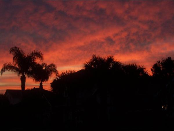 Sunrise by ZoolyOoly
