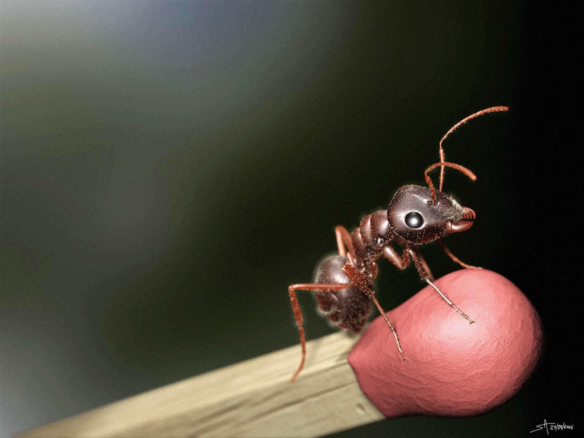 Formiga Virtual - Virtual Ant by playmobil