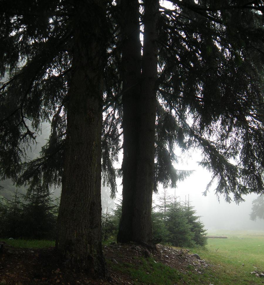 Magical mist by HikariTori