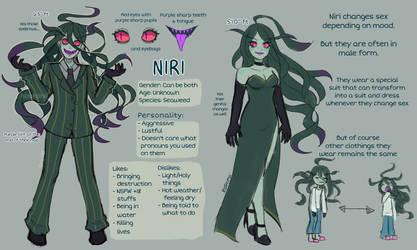 Niri reference