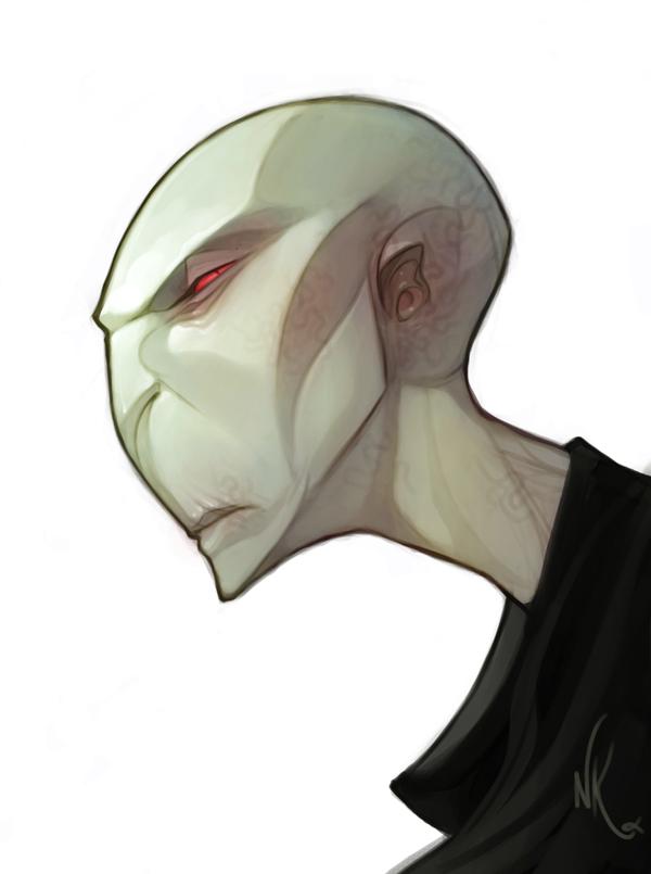 Voldemort Sketch by nicholaskole