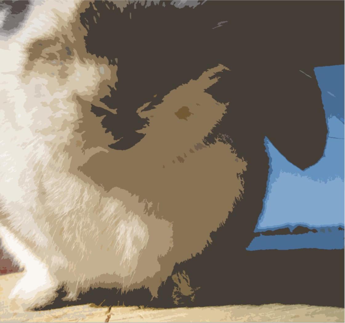 Rabbit Breath by silentsnowfall