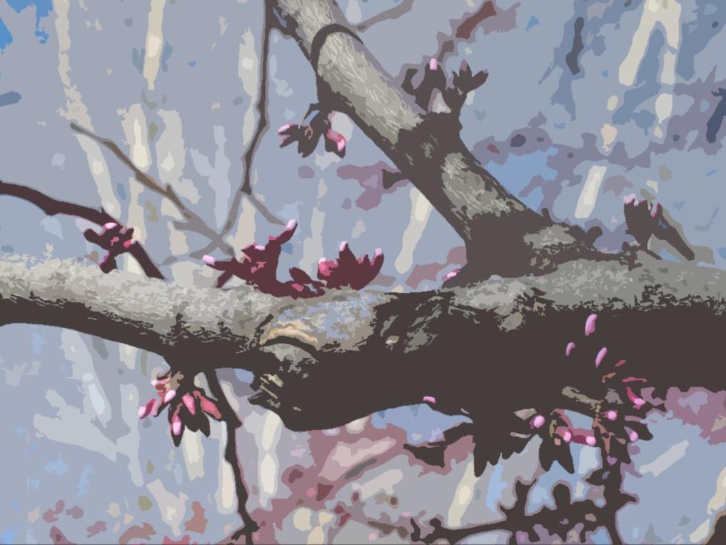 Cartoon Tree by silentsnowfall