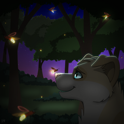 Friend of the Fireflies (Anniversary)