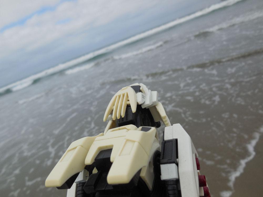 Liger at the Beach by Liger-Zero-Schneider