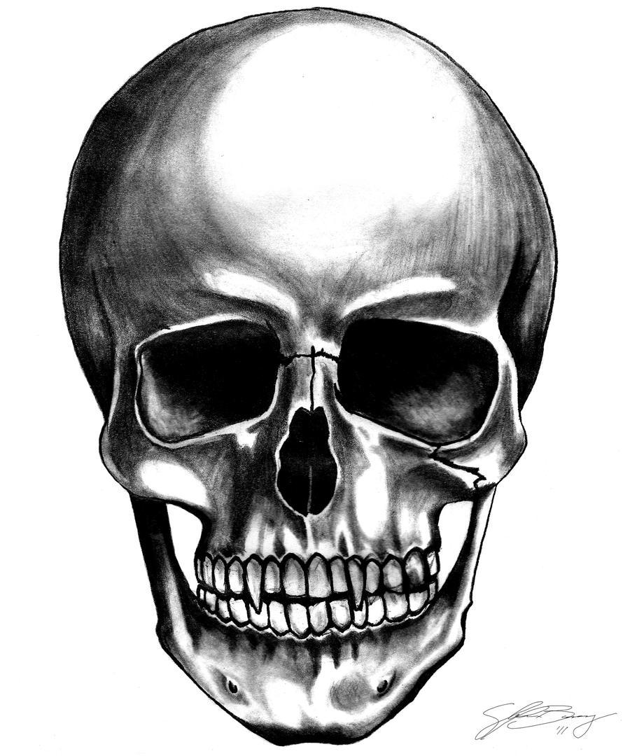 Vampire Skull By Diefused On Deviantart