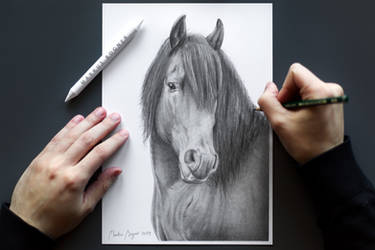 My horse and I wish you happy holidays!