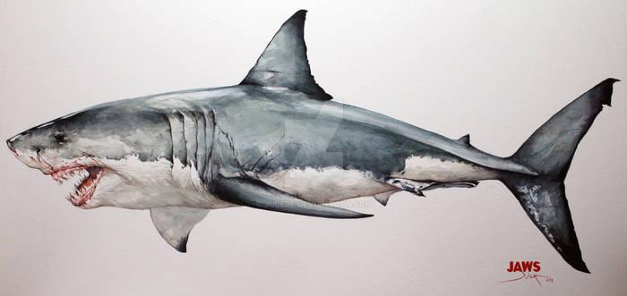 JAWS, shark watercolour