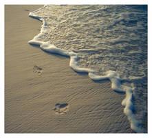 Little steps by sekundek