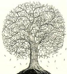 Family tree by MattiasA