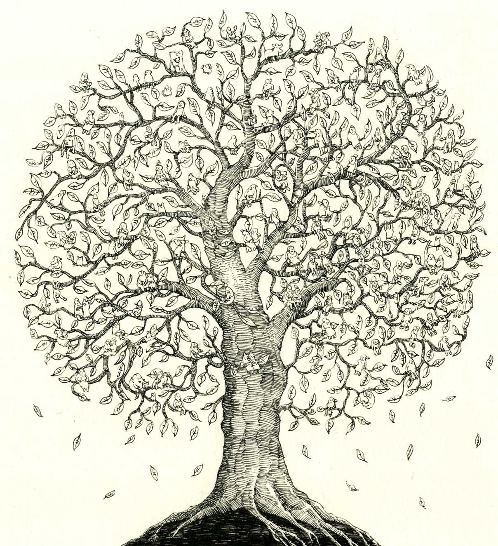 Cool Family Tree Drawings Family Tree by Mattiasa Cool