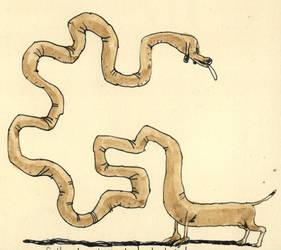 Fully developed dachshund by MattiasA
