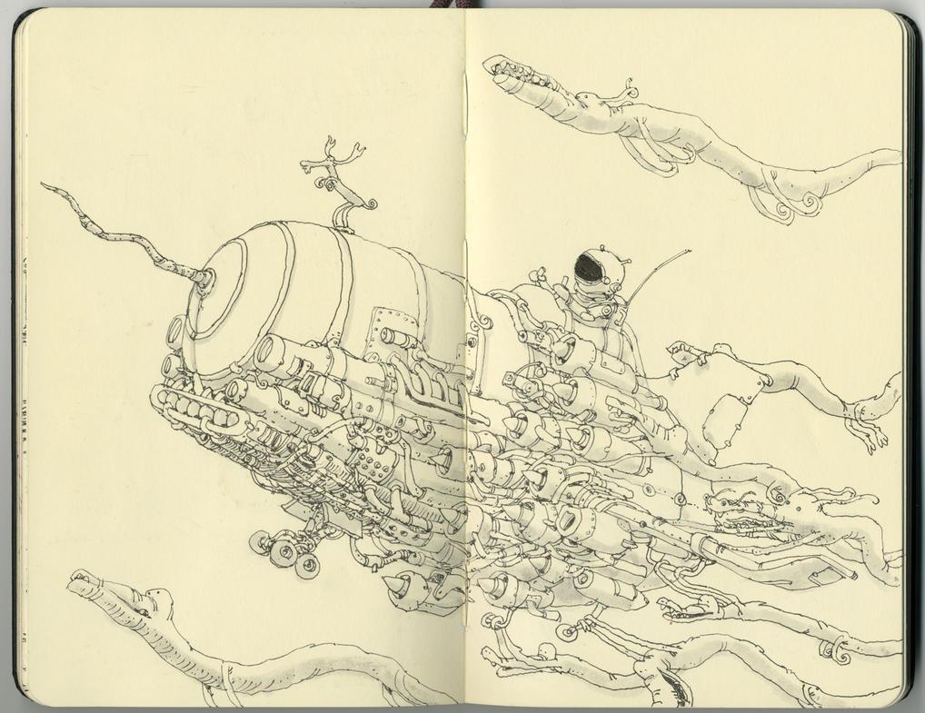 Porpoise by MattiasA