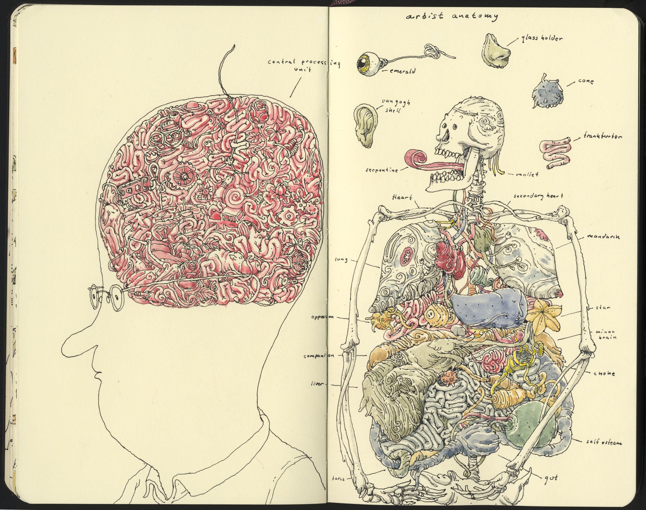 Artist anatomy by MattiasA