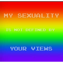 My sexuality is not defined by.... (3)
