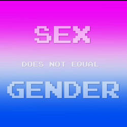 Sex does not equal gender 2