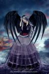 Black wings in the wind