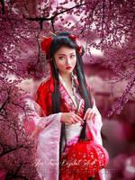 Sakura by jiajenn