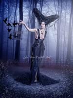 Raven by jiajenn
