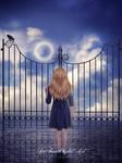 Gate Night V2