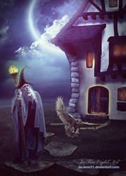 Wizard Home by jiajenn