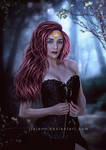 Dark corset